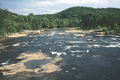 Tygart Valley River