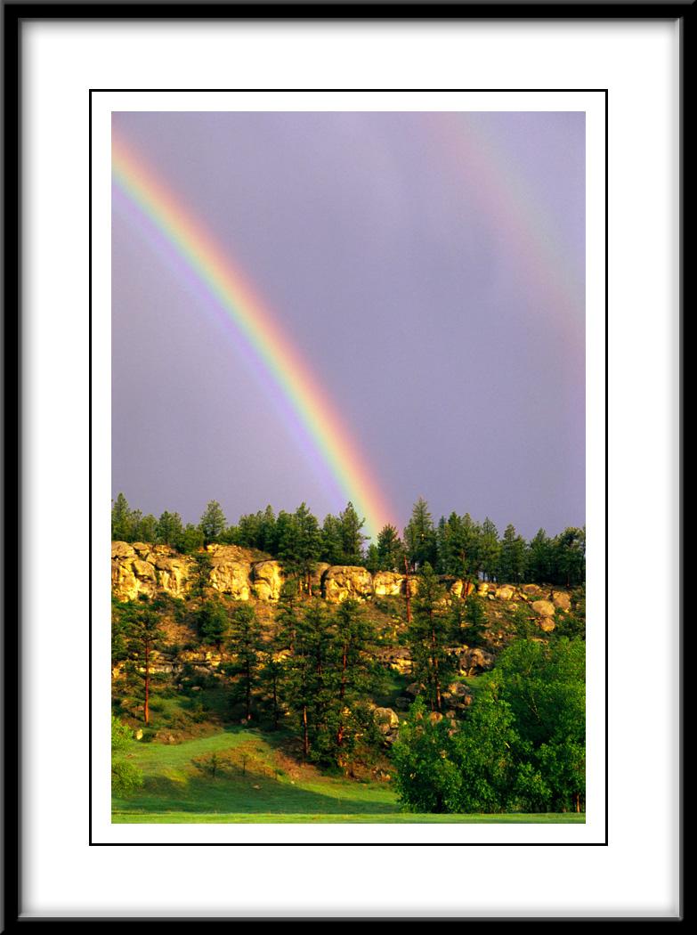 roundup-rainbow