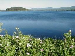 island-pond-1