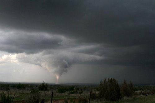 holly-tornado
