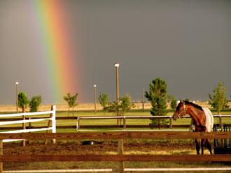 rainbow-in-sunray