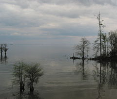 lake-moultrie
