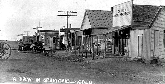 springfield6