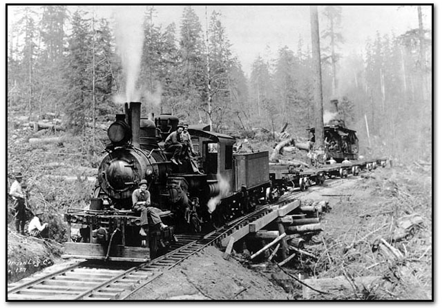 old timber train