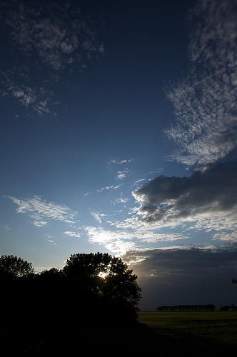 borup sunset