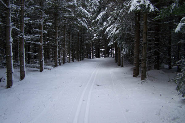 x country ski in chassall