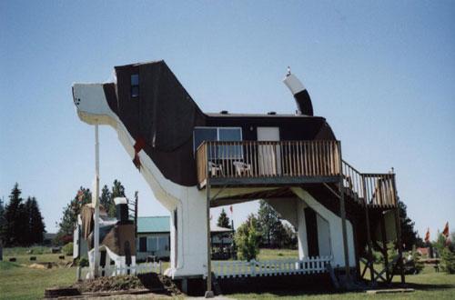 Cottonwood, Idaho « A Landing a Day