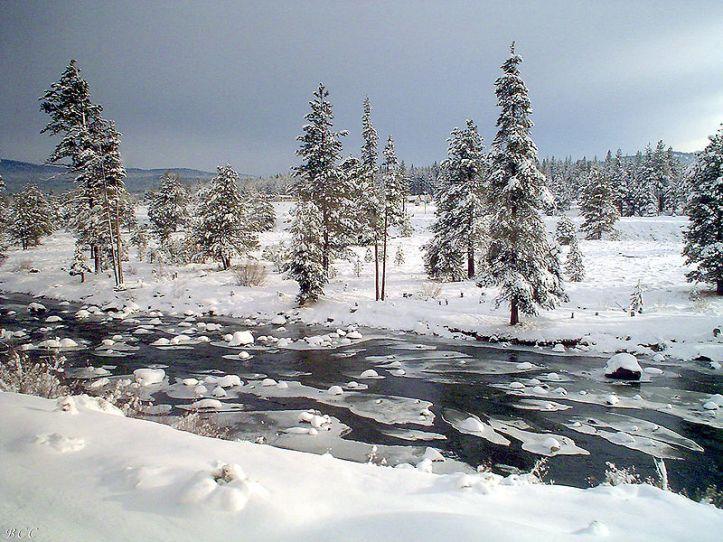 truckee river wiki