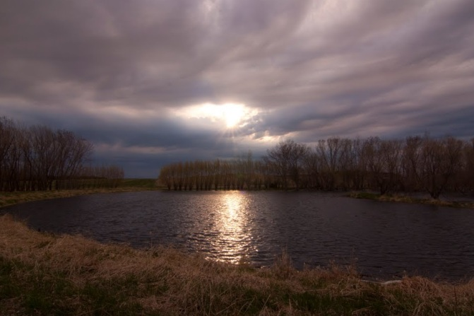 pond near gregory by sam stukel  pano