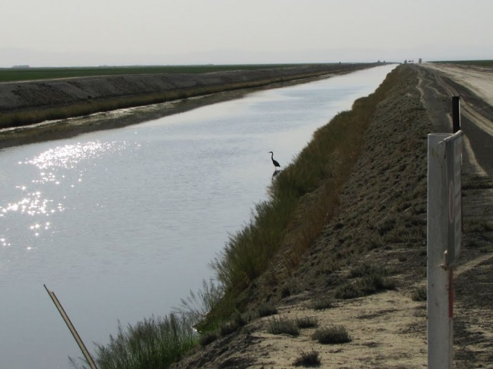 arbornet lake tulare water management