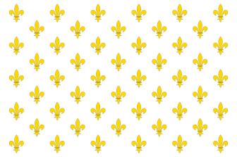 800px-Pavillon_royal_de_France.svg