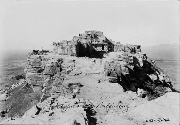 baslerWalpi_arizona 1920
