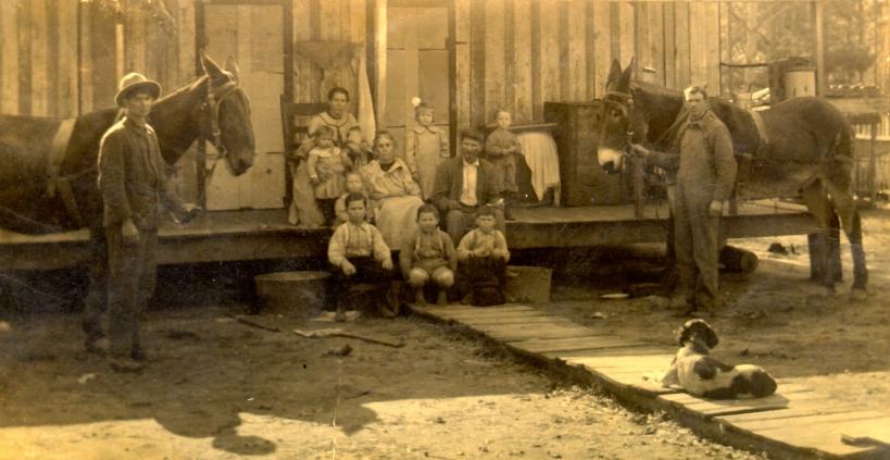 CollinsfamWinnfieldLAc1912  rootsweb