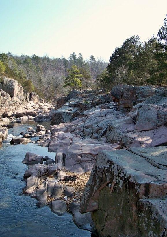 purplebirch65 castor river