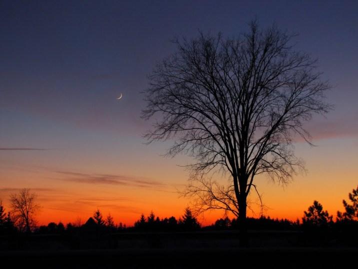 sunset over royalton Maria Bo pano