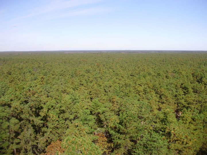 800px-2009-11-04_20-View_north_from_the_top_of_the_Apple_Pie_Hill_fire_tower