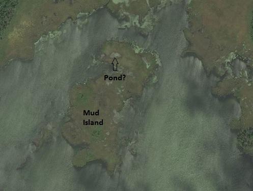 bing pond on an island in a lake on an island in a lake - mud lake