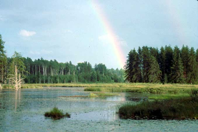 rainbow pic 7 mi s of sidnaw from old email