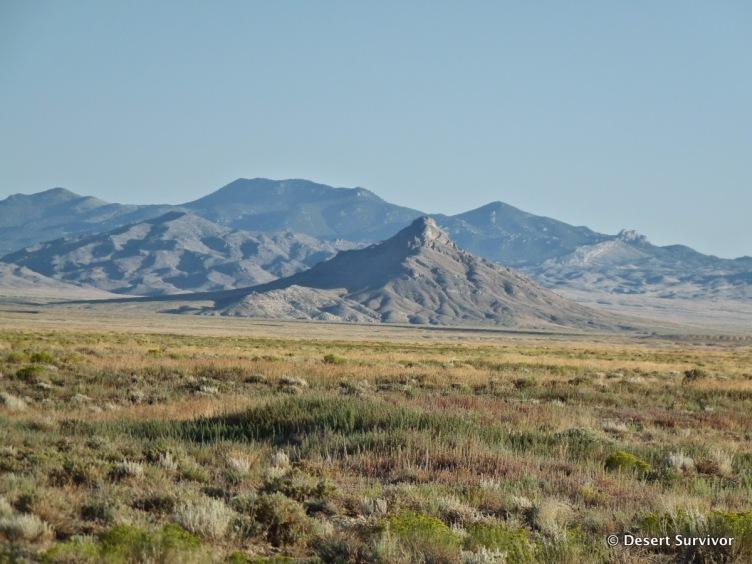 1-gandy mountain desert survivor