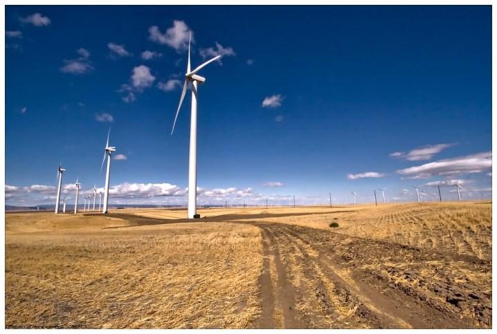 pano windmills devin simpson