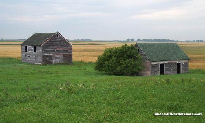 lucca farm
