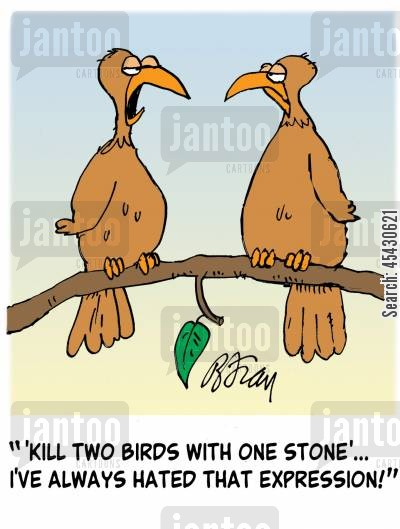 ' 'Kill two birds with one stone'...I've always hated that expression!'