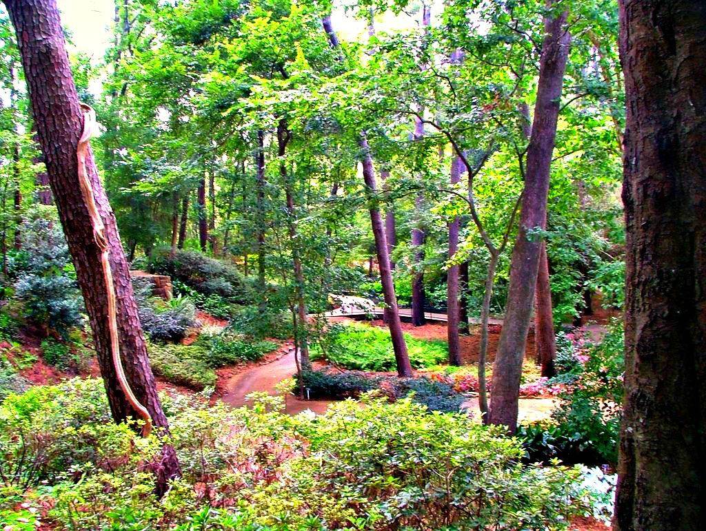 pano-quatrock-mercer-arboretum